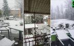 Śnieżny środek maja w Zakopanem